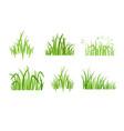 set eco green grass icon vector image