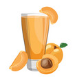 a glass fresh apricot juice vitamin refreshing vector image vector image
