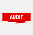 audit vector image vector image