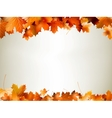 Colorful autumn leaves falling EPS 10 vector image