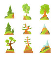 coniferous and deciduous trees set natural vector image vector image