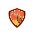 Deer Stag Buck Head Shield Retro vector image vector image