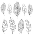 feathers on white backgrounds vector image vector image