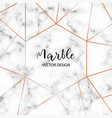 marble design template for invitation banners vector image