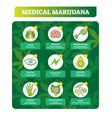 medical marihuana benefits set vector image