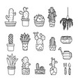 set of fancy cactus plants vector image vector image