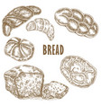 bakery set hand dranw bread collection vector image