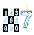 Birthday candles number vector image vector image