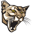 Cougar panther mascot head graphic vector | Price: 1 Credit (USD $1)