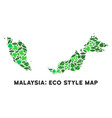 eco green collage malaysia map vector image vector image