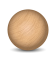 wooden ball vector image vector image