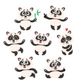 set of cute smiling baby panda characters - vector image