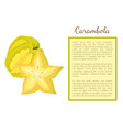 carambola or starfruit exotic fruit poster vector image vector image