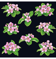 flowering bunches on black vector image vector image