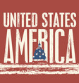inscription united states america and us flag vector image vector image