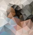 light beige blue gray polygon triangular pattern vector image vector image