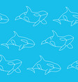 seamless pattern killer whale in outline style vector image vector image