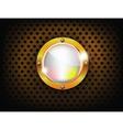 shiny button vector image
