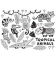black and white set of tropical animals vector image vector image