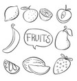 doodle of fruit hand draw vector image vector image