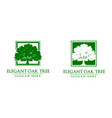 green oak tree logo design vector image