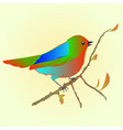 little bird on branch spring background vector image vector image