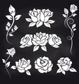decorative roses on chalkboard vector image vector image