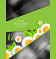 environmental background vector image vector image