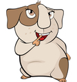 Funny brown guinea pig cartoon vector image vector image