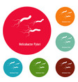 helicobacter pylory icons circle set vector image