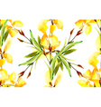 Iris watercolor can be used as greeting card vector image vector image
