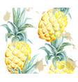 pineapple pattern watercolor tropic fruits vector image vector image