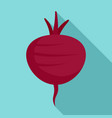 beetroot icon flat style vector image
