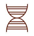human body dna molecule anatomy organ health line vector image vector image