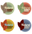 Natural Banners Design Set Vintage Style vector image