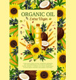 olives sunflowers coconut colza extra virgin oil vector image