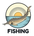 Sturgeon fishing banner vector image vector image