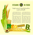 vitamin b9 in food vector image