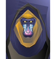 Abstract Ape vector image vector image
