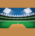 cricket stadium with neon lights arena vector image