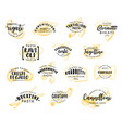 pasta lettering icons vector image