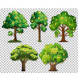 set different trees on transparent background vector image
