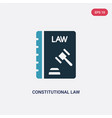 two color constitutional law icon from law vector image vector image