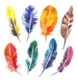 Watercolor hand drawn feather set vector image vector image
