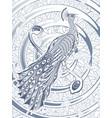 hand drawn beautiful peacock template vector image