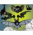 bats wings vector image vector image