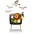 Lion and birds on television screen vector image vector image