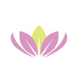 lotus beauty logo vector image