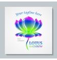 Luxury image logo Rainbow Lotus Business design vector image vector image