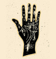 palmistry hand on a white background vector image vector image
